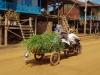 2457 Cambodja Kampong Khleang