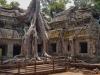 2695 Cambodja Ta Prohm