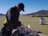 2265-Mongolie-Lake-Terkhiin-Tsagaan-bij-de-nomaden