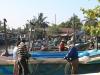 645 Sri Lanka vismarkt Negombo