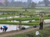 508 Vietnam Ninh Binh Tam Coc fiets